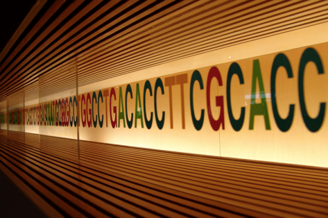 DNA_line.png